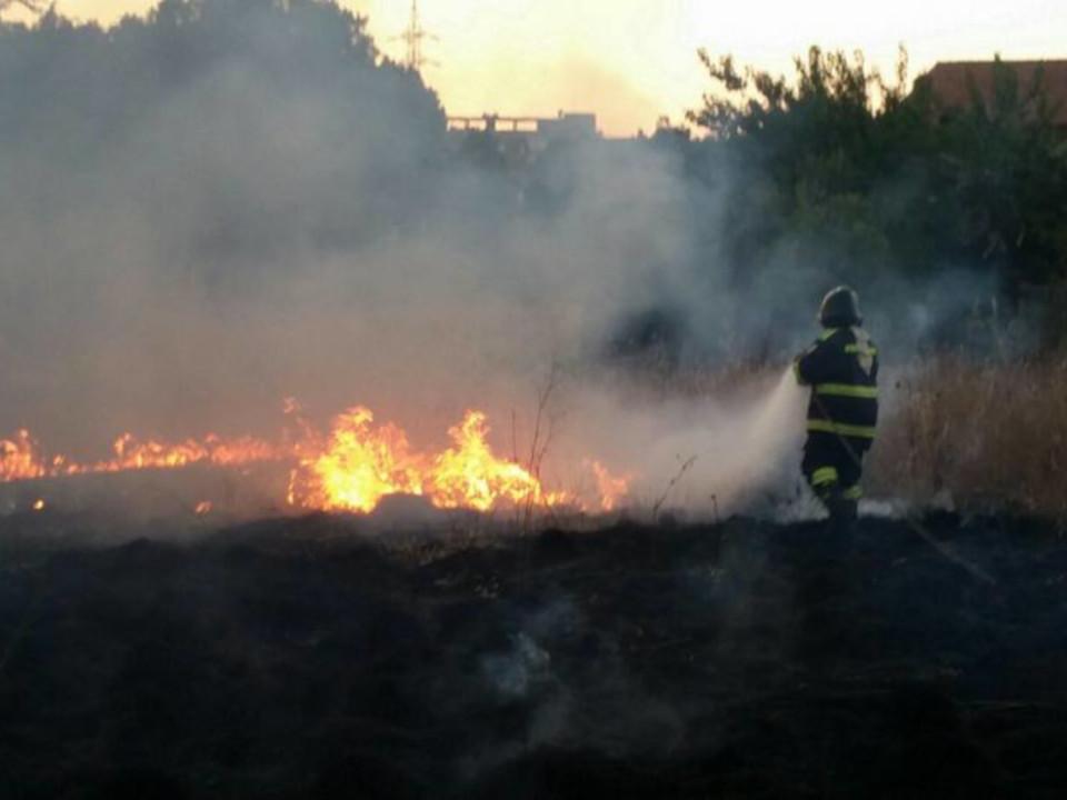 Volontariato Antincendio Boschivo